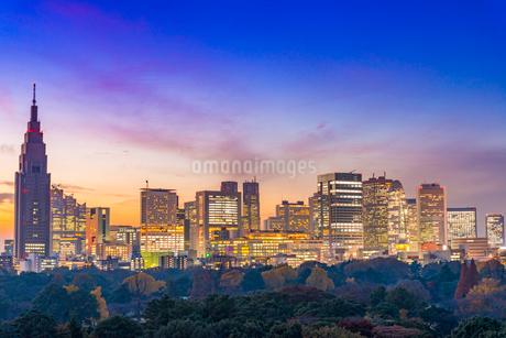 新宿ビル群の夜景の写真素材 [FYI01669781]
