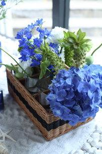 青い花夏のフラワーアレンジメントの写真素材 [FYI01669821]