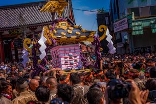 浅草三社祭の写真素材 [FYI01670020]