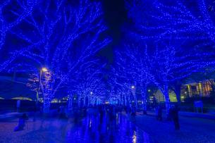 渋谷青の洞窟 ウィンターイルミネーションの写真素材 [FYI01670065]