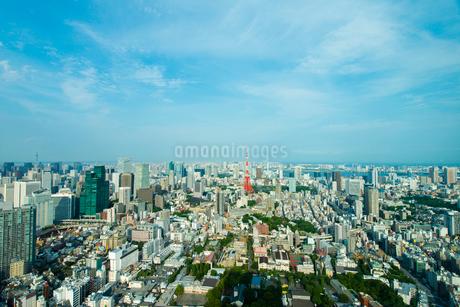 東京タワーと東京スカイツリーとレインボーブリッジと東京ゲートブリッジの写真素材 [FYI01670276]