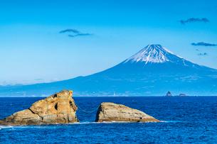 田子から望む富士山の写真素材 [FYI01670461]