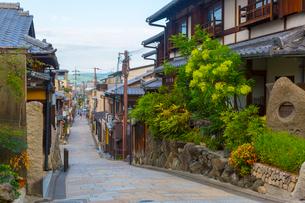 早朝の八坂通り・石畳の道の写真素材 [FYI01670679]