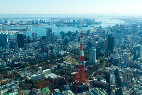 東京タワーと増上寺周辺の空撮の写真素材 [FYI01670691]