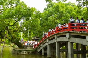 人々で賑わう大宰府天満宮の太鼓橋の写真素材 [FYI01670856]