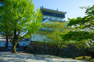 青空に映える小倉城の写真素材 [FYI01670931]