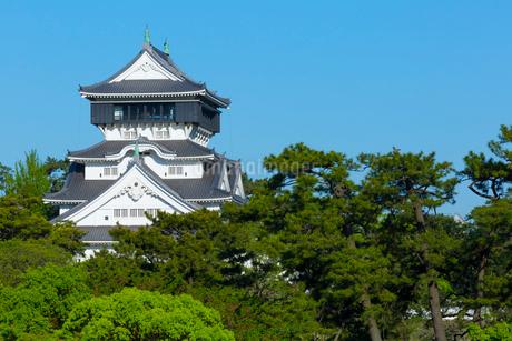 青空に映える小倉城の写真素材 [FYI01670941]