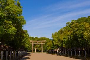 橿原神宮の一の鳥居と表参道の写真素材 [FYI01670975]