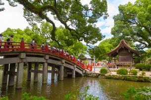 人々で賑わう大宰府天満宮の太鼓橋の写真素材 [FYI01670993]
