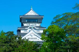 青空に映える小倉城の写真素材 [FYI01671138]