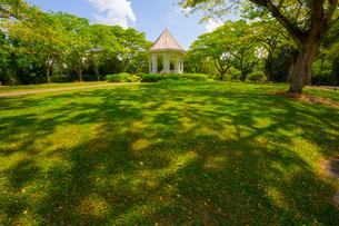 緑豊かなシンガポール植物園の写真素材 [FYI01671252]