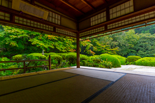 雨の京都 詩仙堂の写真素材 [FYI01671354]