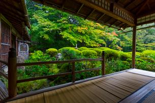 雨の京都 詩仙堂の写真素材 [FYI01671367]
