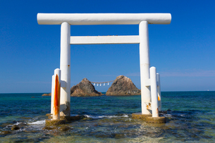 桜井二見ヶ浦の鳥居と夫婦岩の写真素材 [FYI01671383]