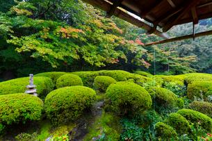 雨の京都 詩仙堂の写真素材 [FYI01671397]