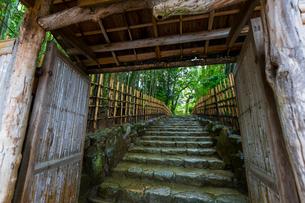 雨の京都 詩仙堂の写真素材 [FYI01671405]