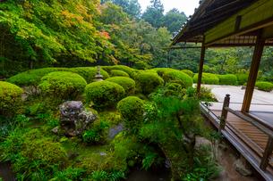 雨の京都 詩仙堂の写真素材 [FYI01671483]