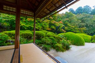 雨の京都 詩仙堂の写真素材 [FYI01671484]