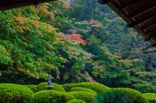 雨の京都 詩仙堂の写真素材 [FYI01671702]