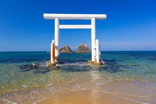 桜井二見ヶ浦の鳥居と夫婦岩の写真素材 [FYI01671724]