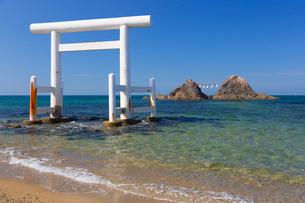 桜井二見ヶ浦の鳥居と夫婦岩の写真素材 [FYI01671728]
