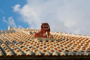 シーサーのある竹富島の民家の写真素材 [FYI01672334]