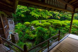 雨の京都 詩仙堂の写真素材 [FYI01672369]