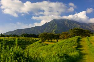 朝日を浴びる阿蘇山の写真素材 [FYI01672539]