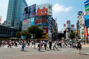 渋谷の交差点の写真素材 [FYI01672794]