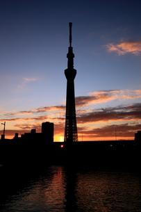 言問橋脇より望む東京スカイツリーと朝日の写真素材 [FYI01672847]