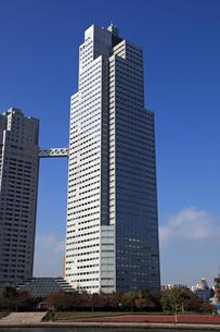 聖路加セントルークスタワー(聖路加タワー)の写真素材 [FYI01672947]