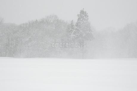 鳴子の冬景色の写真素材 [FYI01673179]