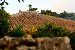 シーサーのある竹富島の民家の写真素材 [FYI01673261]