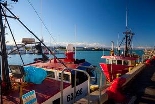 ネイピアの港の写真素材 [FYI01673825]