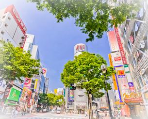 渋谷の町並みの写真素材 [FYI01673913]