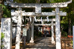 熊野神社の写真素材 [FYI01674014]