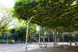 世田谷区立奥沢二丁目公園の写真素材 [FYI01674073]