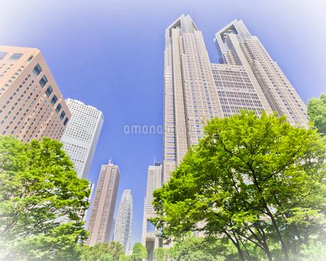 東京都庁舎の写真素材 [FYI01674096]