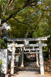 熊野神社の写真素材 [FYI01674161]