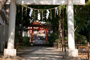 熊野神社の写真素材 [FYI01674183]