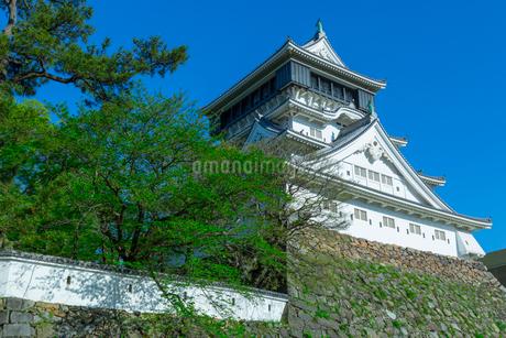 青空に映える小倉城の写真素材 [FYI01674333]