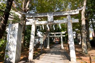 熊野神社の写真素材 [FYI01674347]