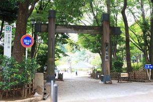 戸越公園の写真素材 [FYI01674794]