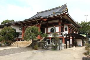 法蓮寺の写真素材 [FYI01674833]