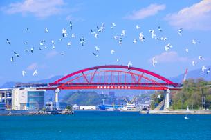 音戸大橋と第2音戸大橋の写真素材 [FYI01674845]