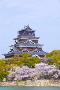 桜と広島城の写真素材 [FYI01674891]