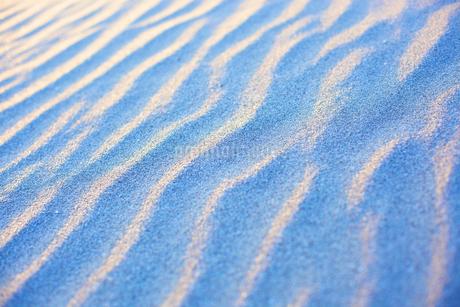 砂丘の写真素材 [FYI01675206]