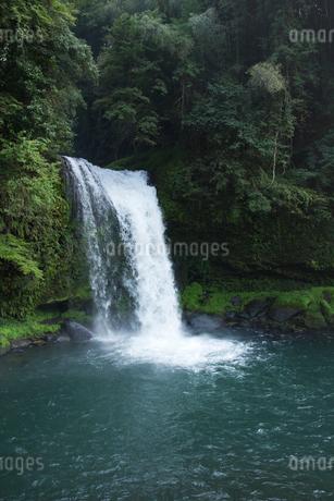 慈恩の滝の写真素材 [FYI01675916]