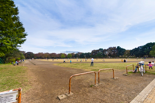 光が丘公園 陸上競技場の写真素材 [FYI01676374]