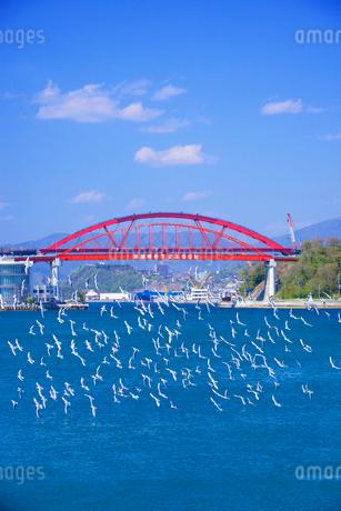 音戸大橋と第2音戸大橋の写真素材 [FYI01676440]
